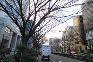 omotesandou201802
