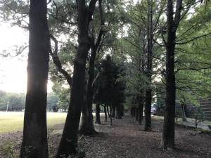 tokorozawa201810